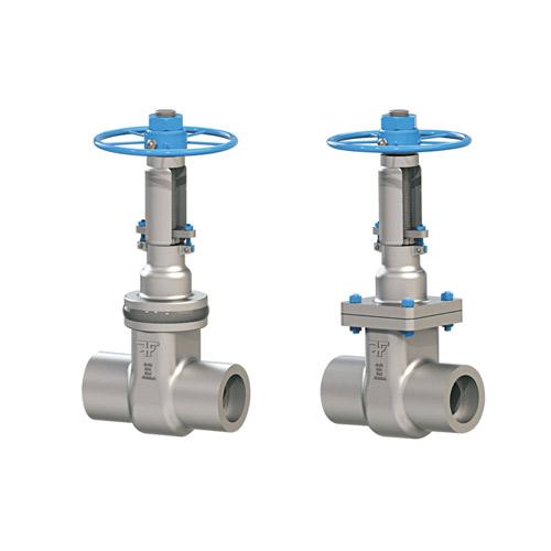 Gate valve forxar industries