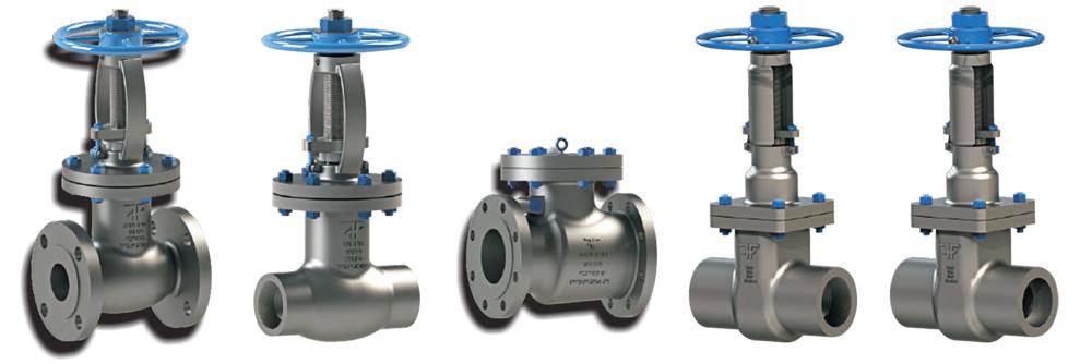 Gate globe check valve ggc forxar industries